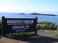 2010_07150291s