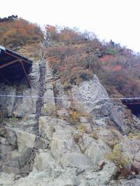 2010_101420039