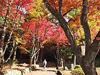 Keisokuzi_025bb